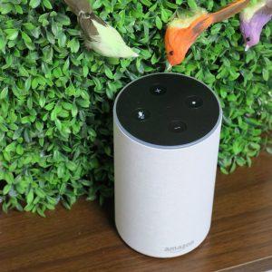 Amazon Echo und Alexa für Kinder