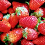7 Erdbeer Rezepte für heiße Tage: Erdbeer-Eis, Frozen Joghurt, Smoothie
